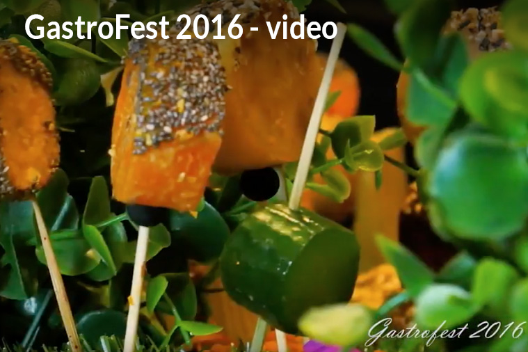 GastroFest 2016 video - Charity Event